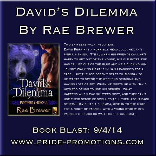 DavidsDilemma600x600Banner