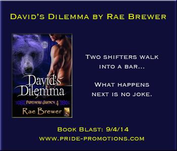 DavidsDilemmaBanner300x250