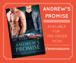 Andrew's Promise - Preorder