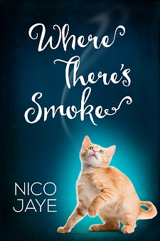 Where There's Smoke by Nico Jaye - Cover (artist, Catt Ford) - Small